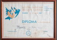 Rassegna Carnica 1950