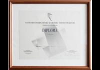 Concorso internazionale A. Stradivari 1994